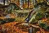 Thistle Creek Pool #2