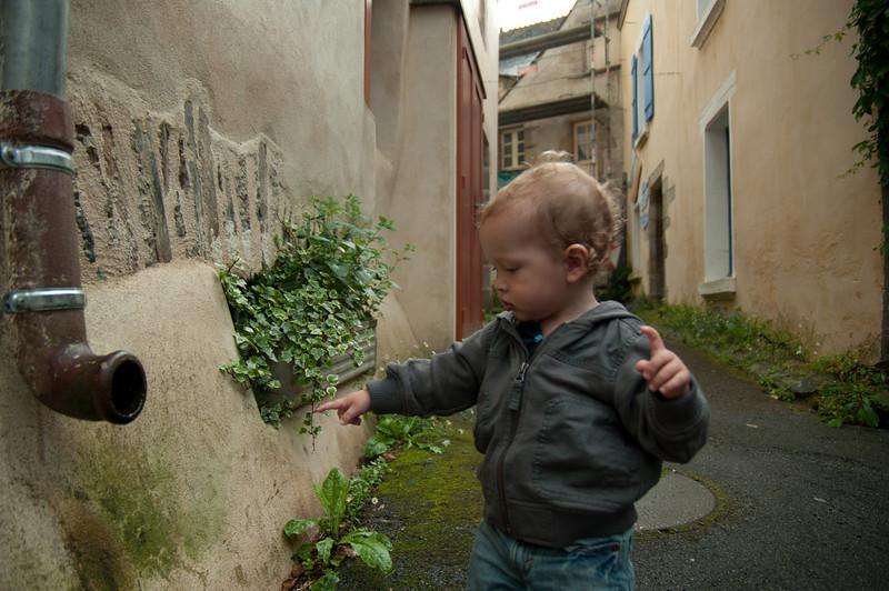 06.09.2010 -  Rochefort en-Terre, France-28.jpg