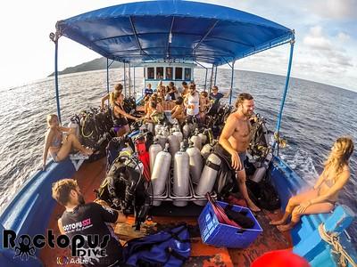Genaral Diving