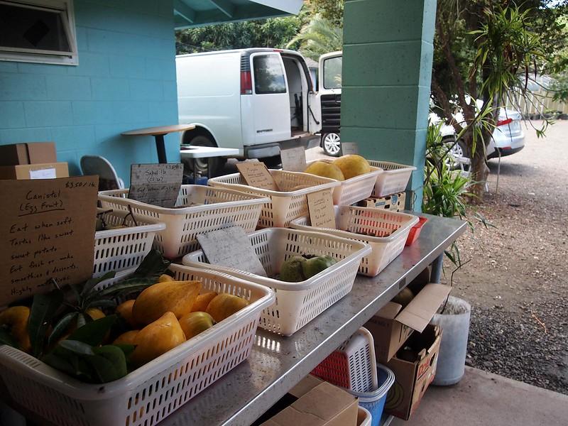 Frankies-Nursery-Market.jpg