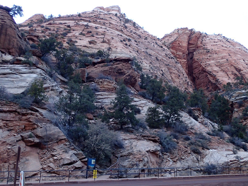 Zion National Park - Ashley 1.JPG