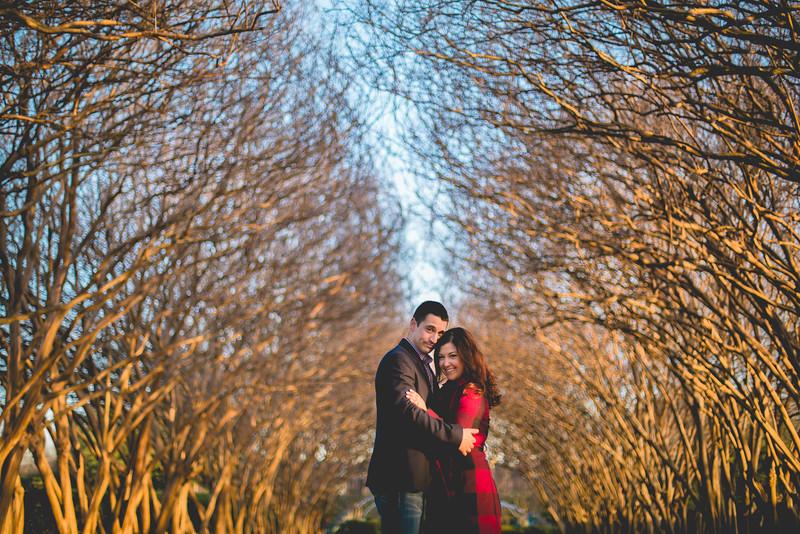2015-01-09-Dallas Arboretum Engagement Photos Print-27.jpg