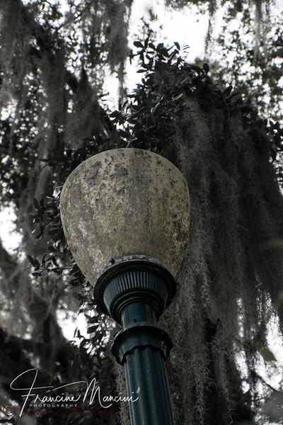 Orlando (363 of 1143).jpg