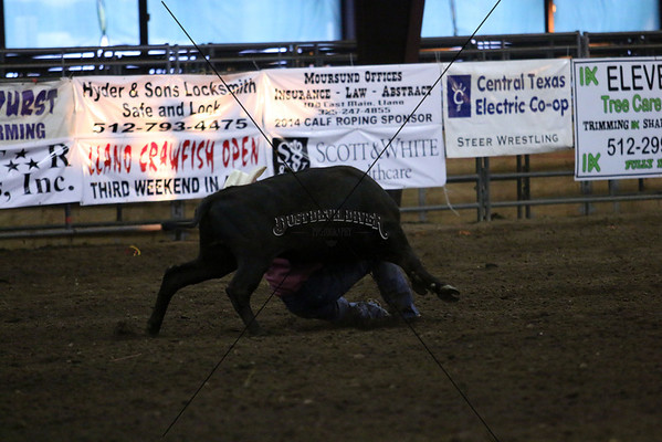 Friday Steer Wrestling