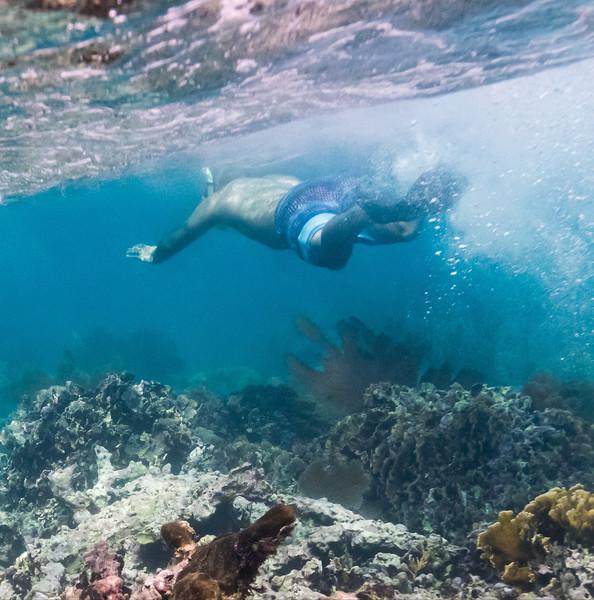 Snorkelling - page015.jpg