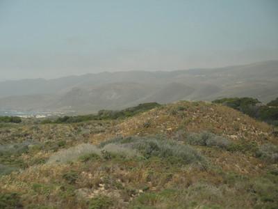 Landscape: Northern California hillside