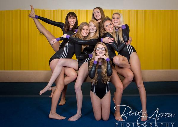 Gymnastics Team 2015