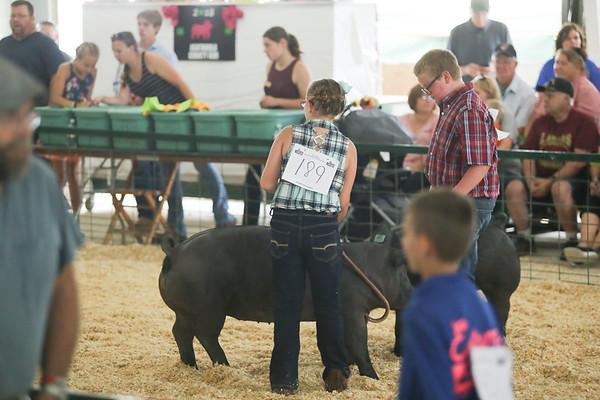 2018 Hog Show
