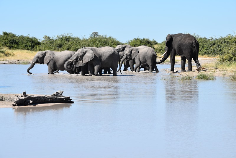 Africa2016 - 49.jpg