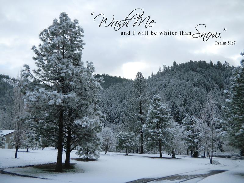 Psalm51-7snow.jpg