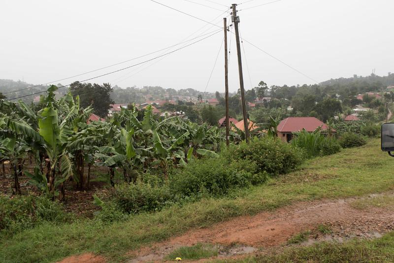 Uganda-0379.jpg