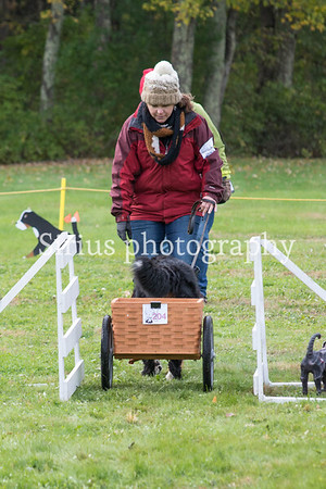 Other Canine Events 2018