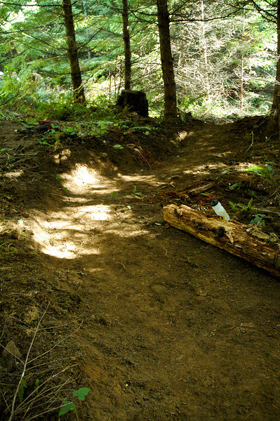 Tasty new section of single track at Stub in Mountain Bike Area