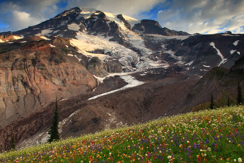 Rocky slopes of Mount Rainier from a meadow of wildflowers