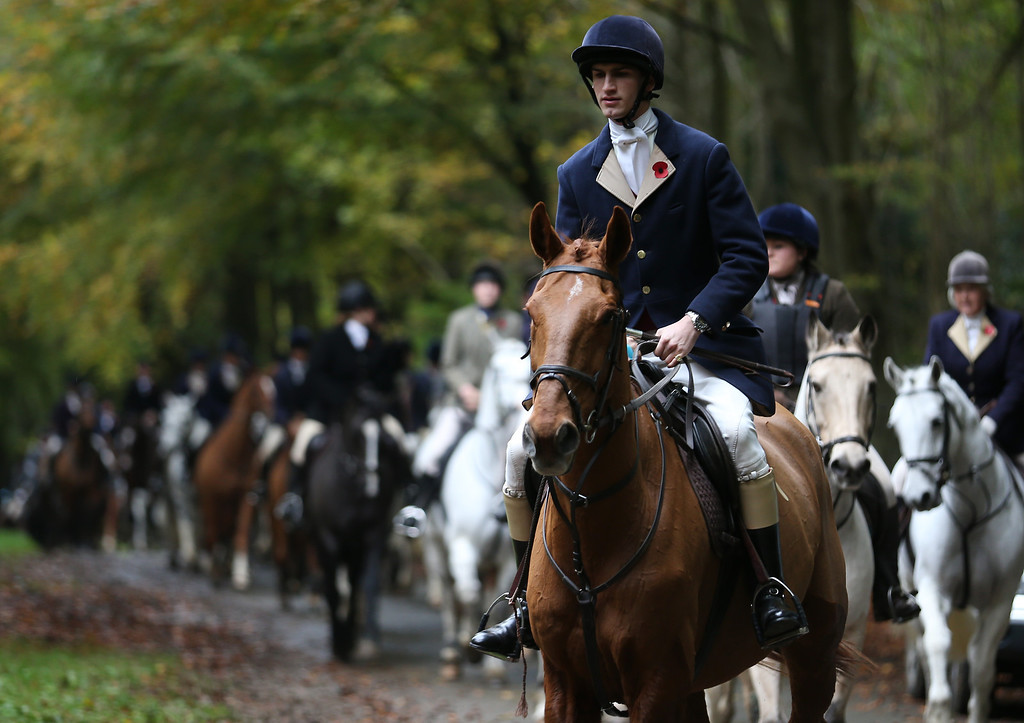 . BADMINTON, GLOUCESTERSHIRE - NOVEMBER 02:  Riders from the Duke of Beaufort\'s Hunt follow the lead huntsmen at their opening meet of the season at Worcester Lodge on November 2, 2013 near Badminton in Gloucestershire, England. Traditionally the hunting season starts at the beginning of November and although a ban on fox hunting with dogs has been in force since February 2005, many supporters of fox hunting are continuing to call for a repeal of the ban, saying the current law is hard to interpret and enforce.  (Photo by Matt Cardy/Getty Images)