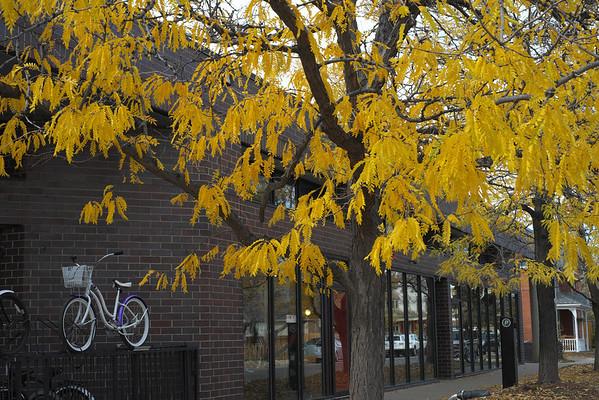 Boulder, CO, October 2012
