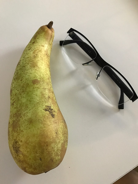 We get fresh fruit brought in daily. On this day, I found the biggest pear ever!!!!