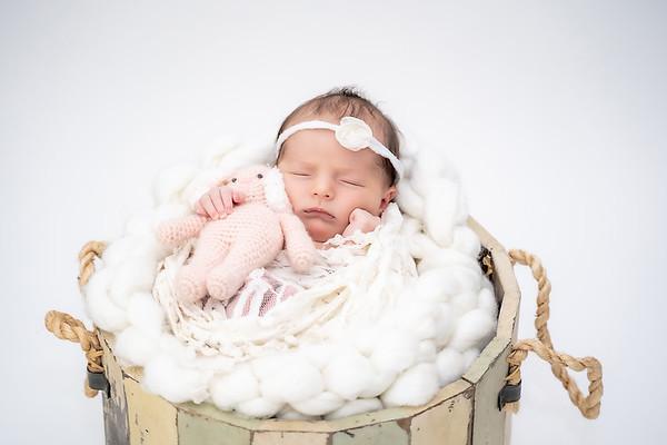 [E.Newborn]
