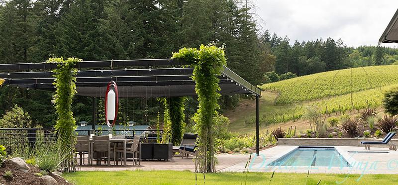 2 Mules poolside patio_7137.jpg