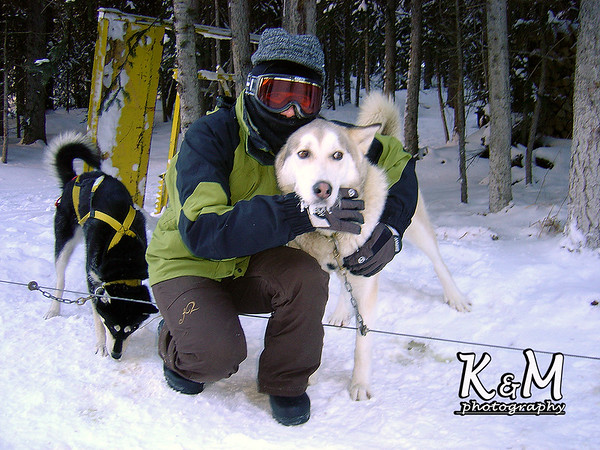 2008-01-20 (Snowy Owl Sled Dog Tour, Canmore)