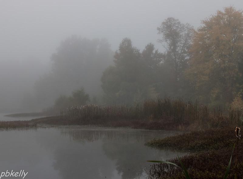 10-15.  Heavy fog this morning.  Headed around the corner to CSW.