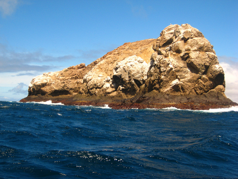 Diving in the Galapagos (208 of 392)
