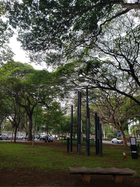 greenery and trees around Sao Paulo