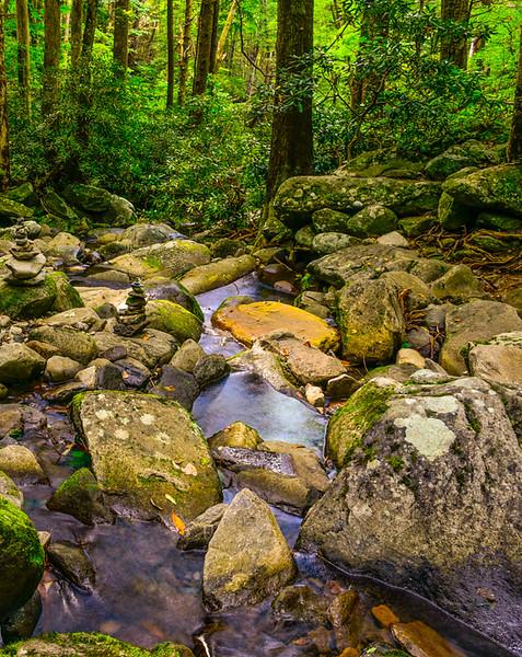 Smoky Mountains 7