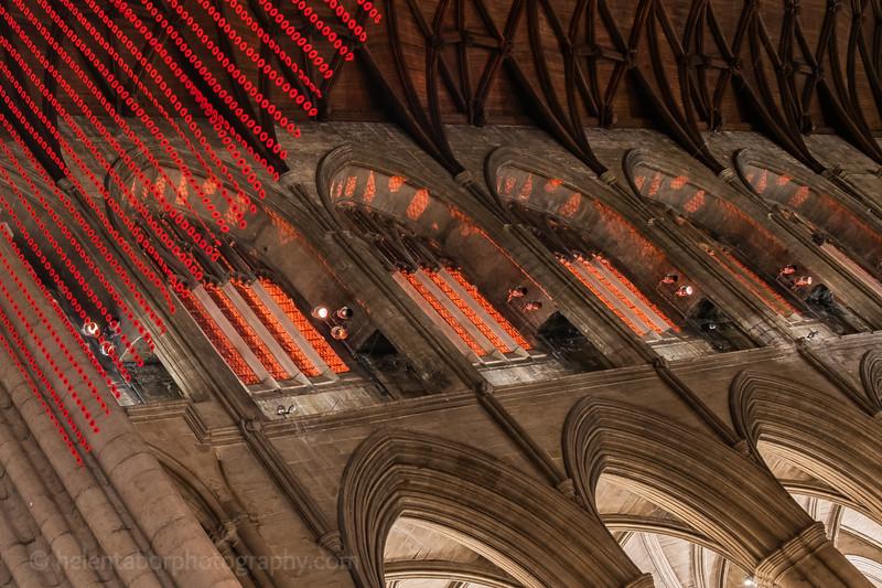 Ripon Cathedral red at night-14.jpg