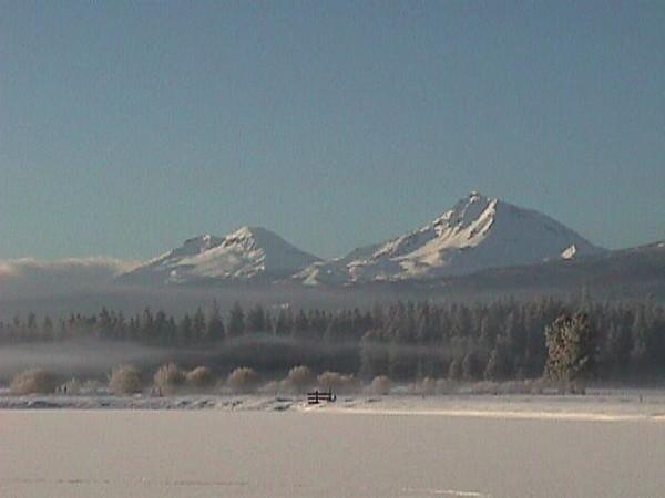 Snowy scene from lodge.jpg