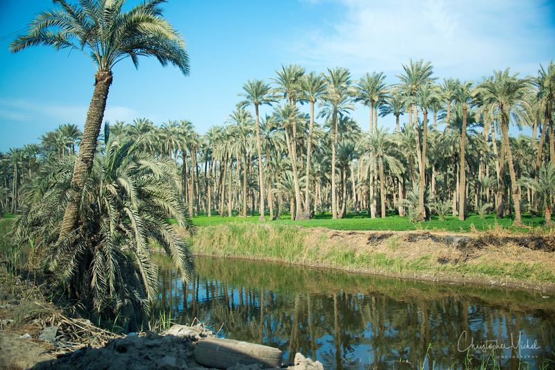 saqqara_unas_tomb_serapeum_dahshur_red_bent_pyramid_20130220_6003.jpg