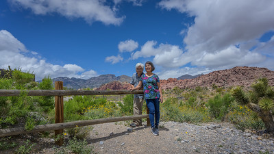 Las Vegas - Red Rock Canyon