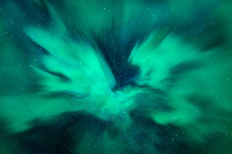 Aurora bird Northern Lights Mountain Lofoten Night Landscape Photography_1.jpg