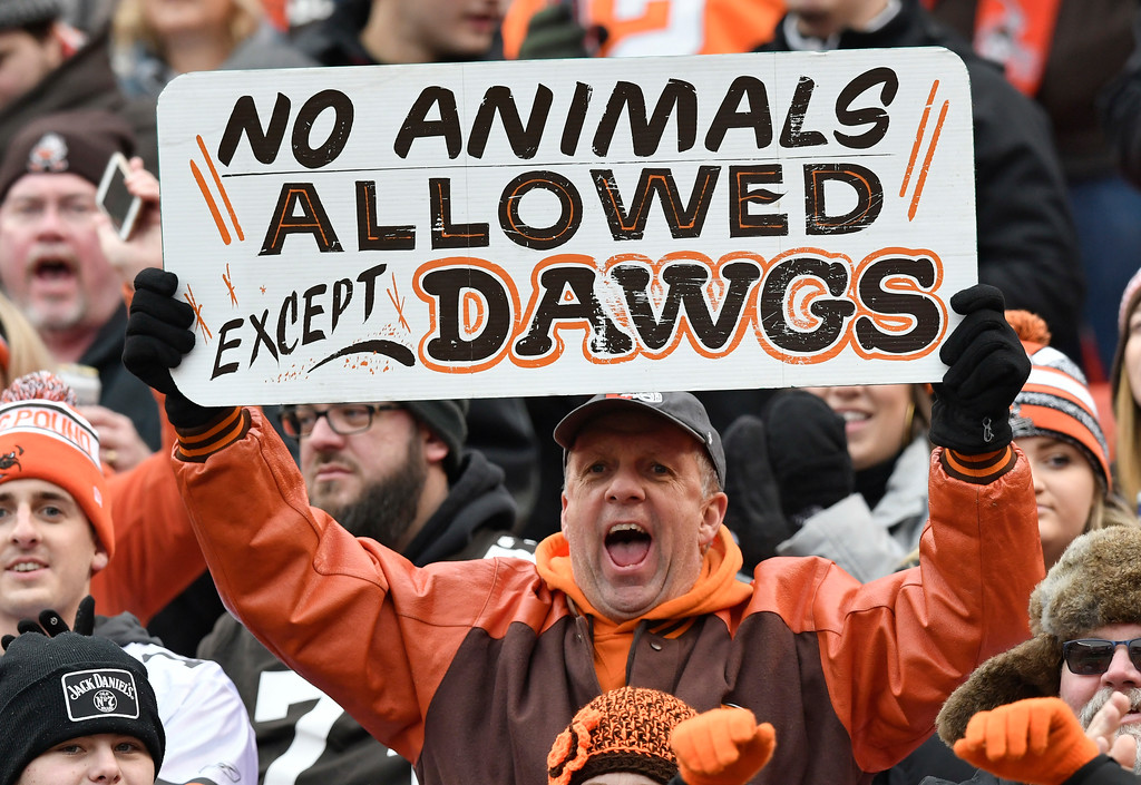 . A Cleveland Browns fan watches the first half of an NFL football game against the Baltimore Ravens, Sunday, Dec. 17, 2017, in Cleveland. (AP Photo/David Richard)