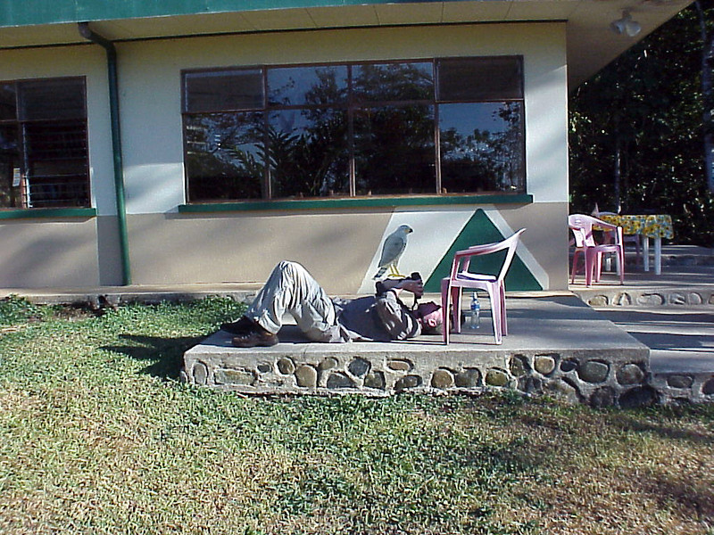 Kevin Calhoon watching swifts at Talari Mountain Lodge Costa Rica 2-16-03 (50898167)