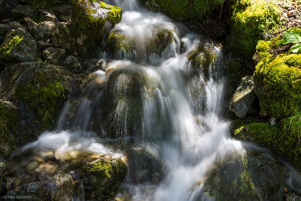 Falls Loop Hike, March 31, 2018