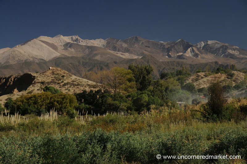 Landscape Near Cachi in Northern Argentina