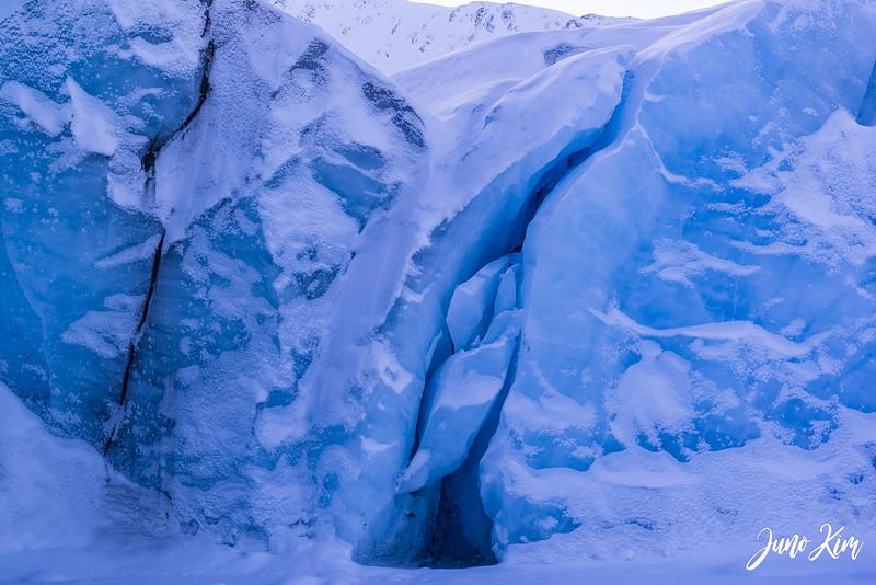 2020-01-17_Alaska Wild Guides-6102513-Juno Kim.jpg