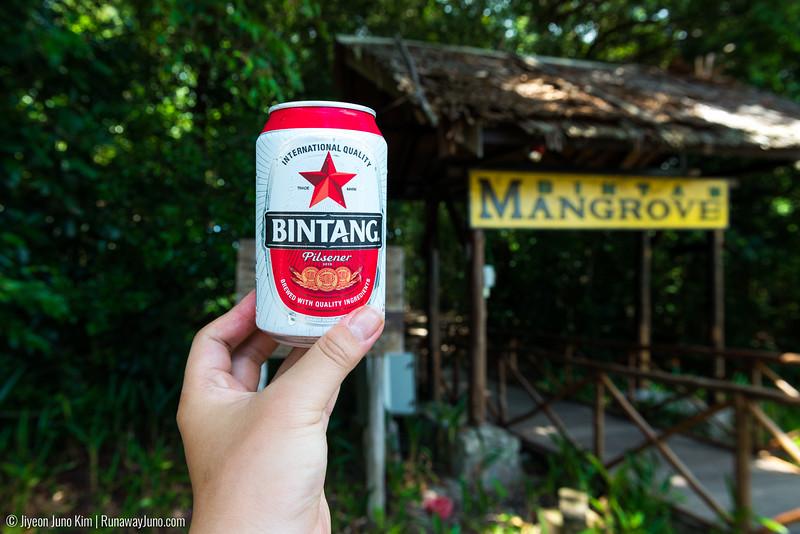Bintan-6101013.jpg