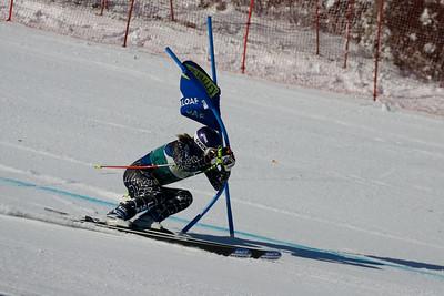 2008 US Alpine Championships