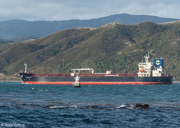 'Petronia Pacific'