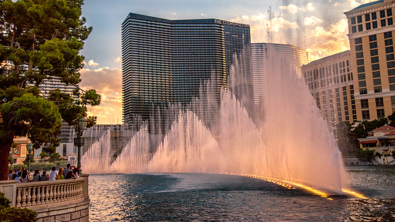 Vegas 2014