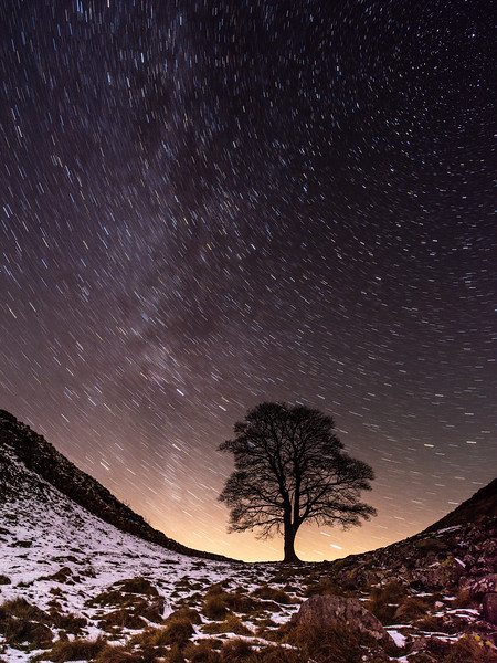 Star trails over Sycamore Gap