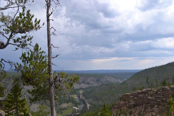 Yellowstone August 2013