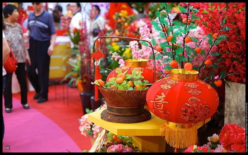 140111 Pavilion CNY 6.jpg