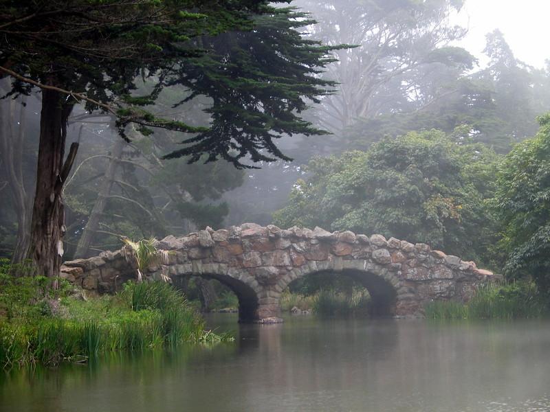 Golden Gate Park (5).jpg