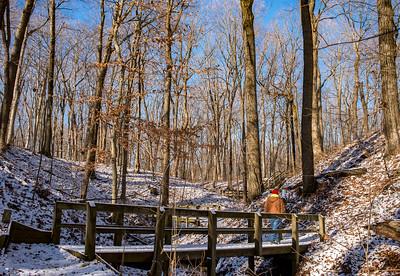 New Year 2020 Chelberg Farm Hike