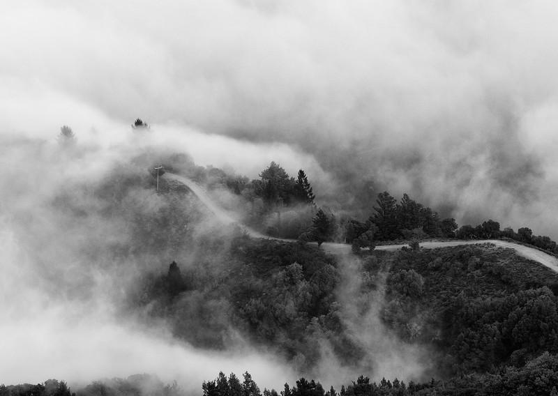 _MG_8113-Mount Tamalpais muir woods- 2010-January-10-Edit.jpg