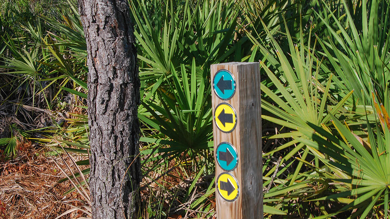 Trail markers in green and yellow