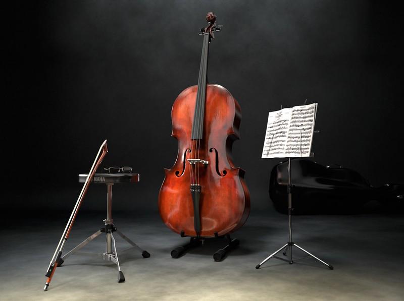 02 v cello 1.jpg
